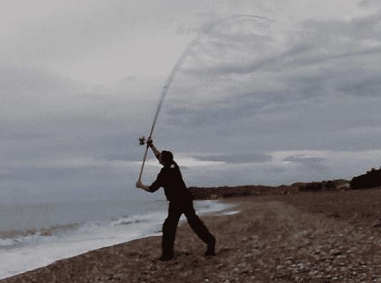 Accion caña pesca